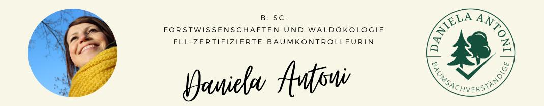 Baumkontrolle Aschaffenburg